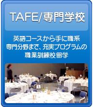 TAFE/専門学校